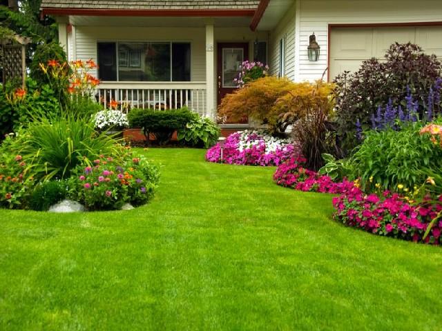 Casas Com Jardins Coloridos4