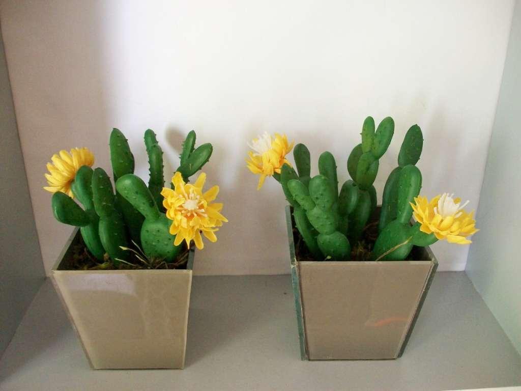 Com Flores5