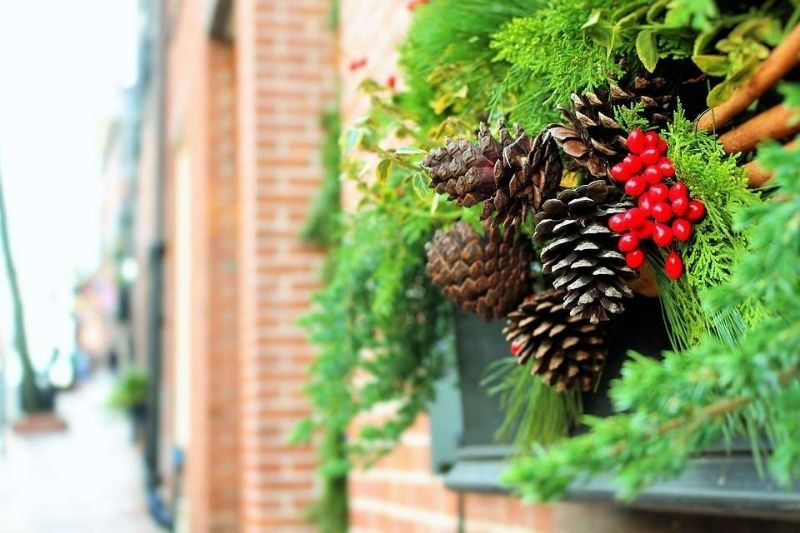 Árvores De Natal (1)