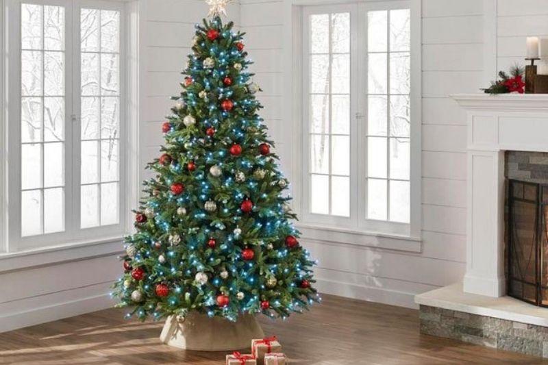 Árvores De Natal (4)