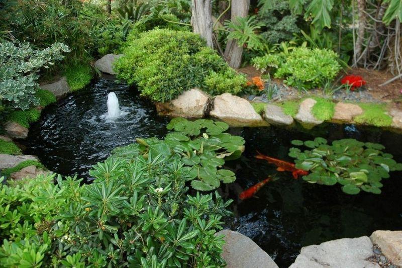 Canais De água Em Jardins Com Pedras (1)