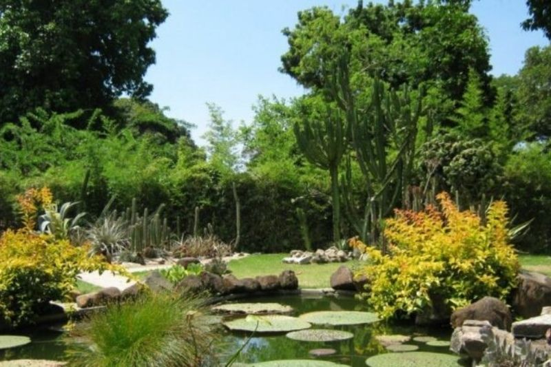Canais De água Em Jardins Com Pedras (3)
