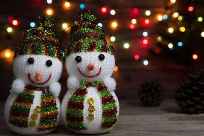 Fotos De Enfeites De Natal Com Pinhas (10)