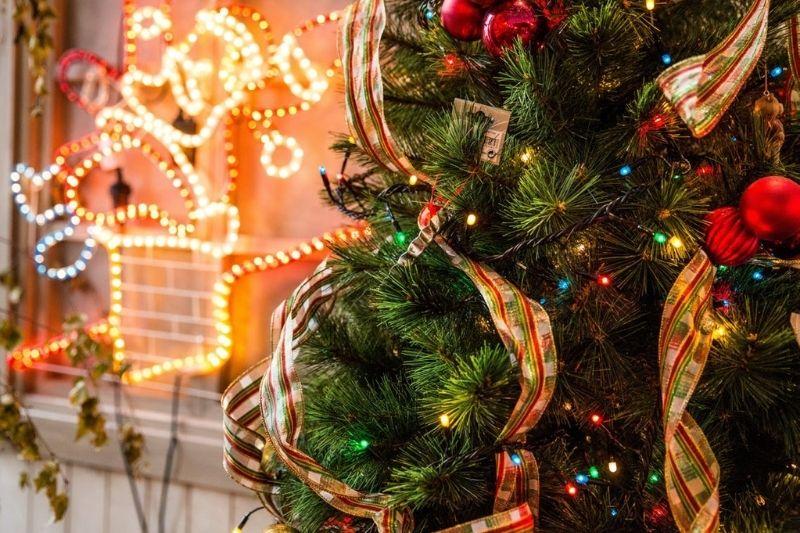 Fotos De Enfeites De Natal Com Pinhas (14)