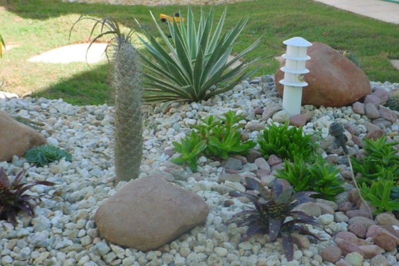 Jardim Com Pedras De Rio (2)