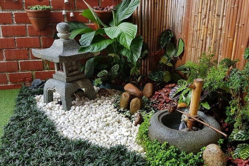 Plantas Em Jardim Zen (2)