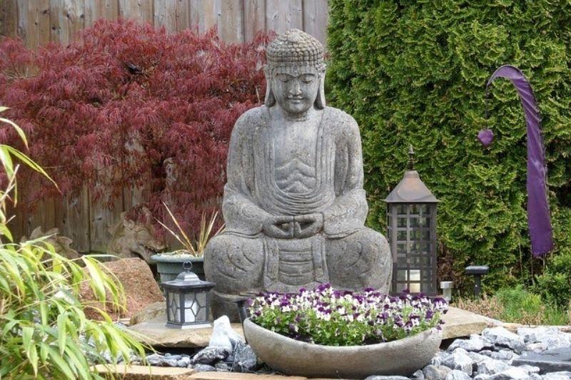 Plantas Em Jardim Zen (3)
