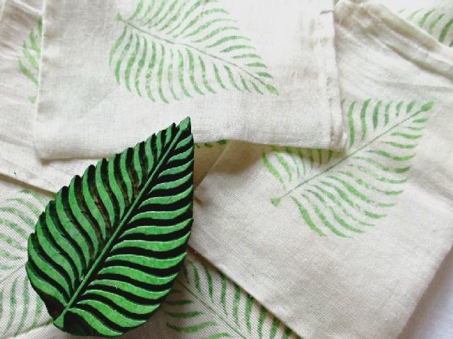 Folhas De Plantas 6
