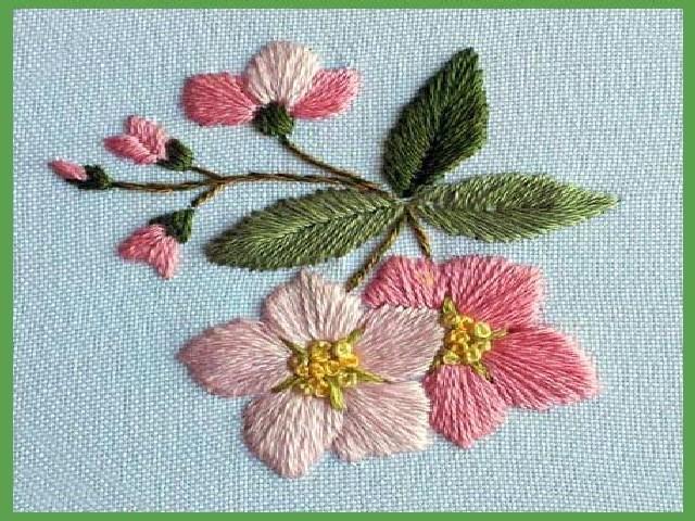 Bordar Flores Em Ponto Cheio 10