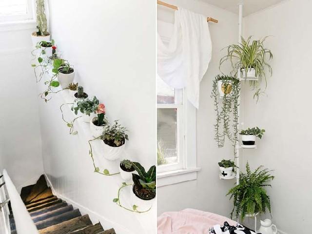 Fotos De Vasos Para Jardim Vertical10