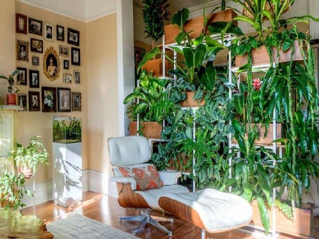 Fotos De Vasos Para Jardim Vertical11