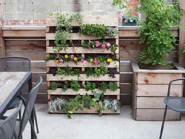 Fotos De Vasos Para Jardim Vertical2