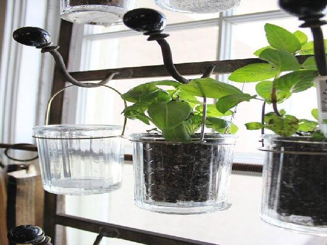Vasos Em Formato De Copo Vertical2
